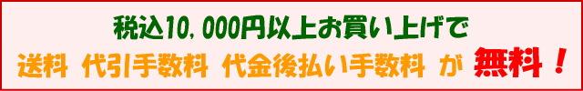 税込10,000円以上で送料、代引手数料、代金後払い手数料が無料!